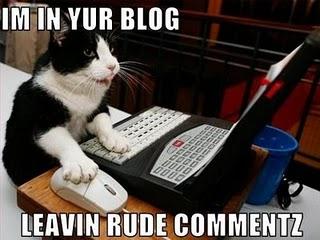 Blogging Cat
